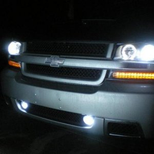 resized hids